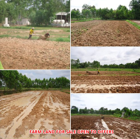 FARM LAND FOR SALE1